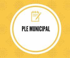 ple municipal
